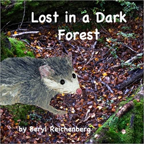 Lost in a Dark Forest