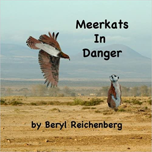 Meerkats In Danger